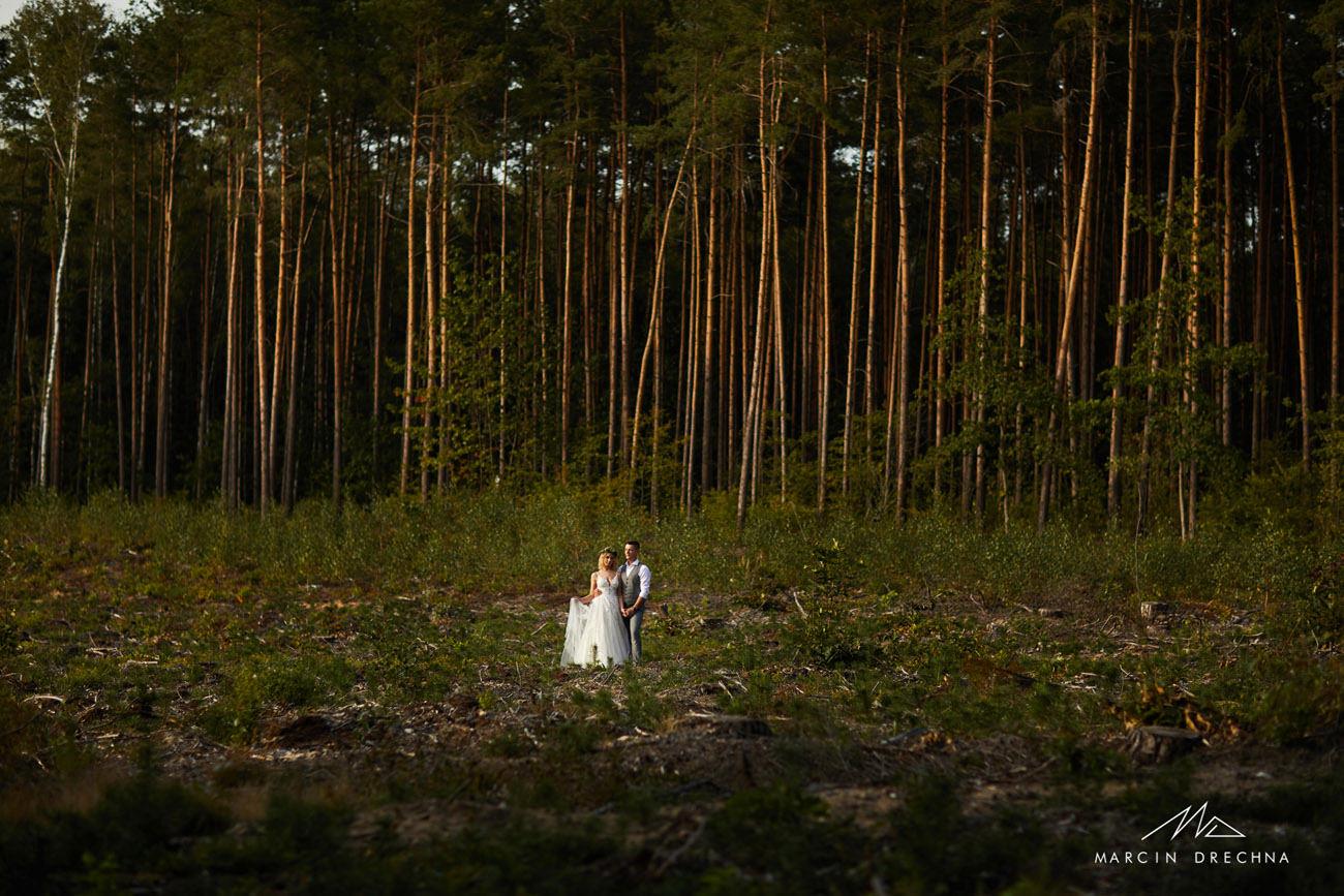 sesja ślubna w lesie łódzkie